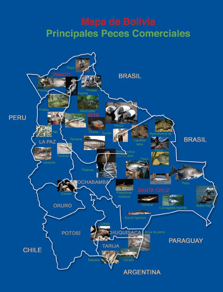Mapa de los Principales peces comerciales de Bolivia