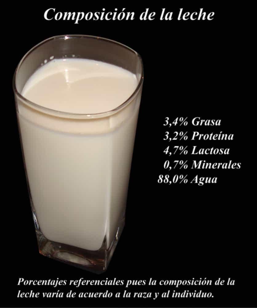 Composición de un vaso de leche