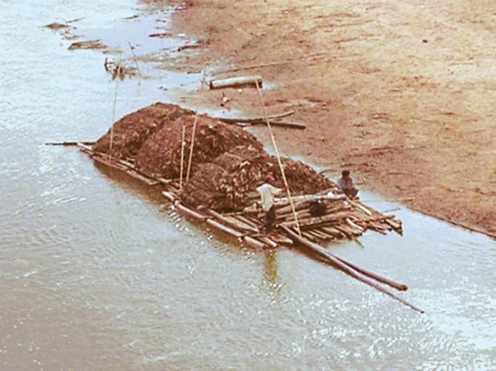 Transporte de jatata por el río Maniqui. Pando.