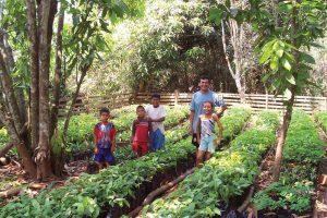 Vivero comunal Trinidacito
