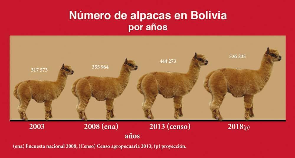 Cuadro: Número de Alpaca en Bolivia por Años
